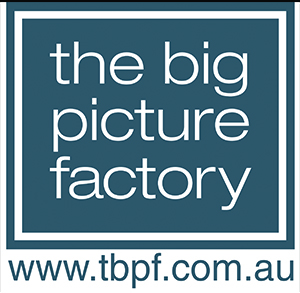 Big Picture Company- web add