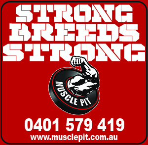 Musclepit Strong B Strong - web add